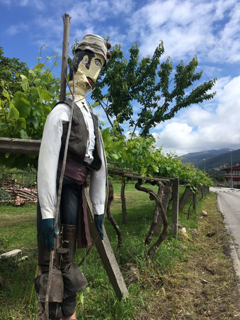 day7 MOS. Camino Portuguese costal